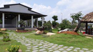 Thiết kế sân vườn,cây kiểng tại phú mỹ